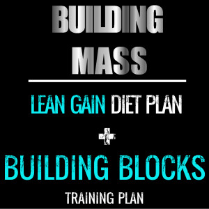 LEAN GAIN BB BUNDLE